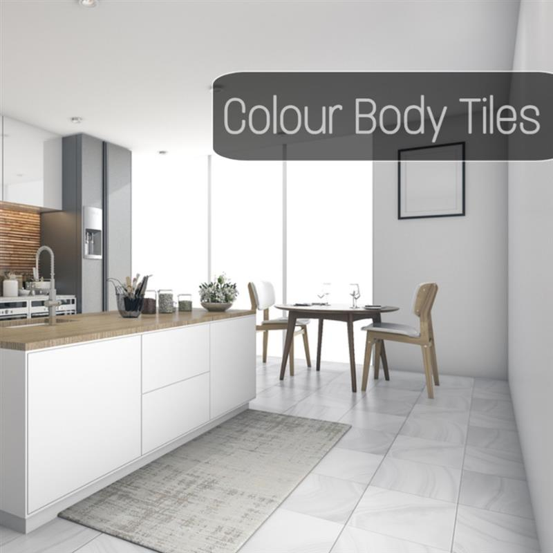 PORCELAIN TILES  (COLOUR BODY)
